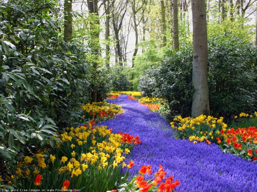 5 Healthy Ways to WelcomeSpring!